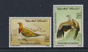 Morocco - 1992, Birds set - MNH - SG 833/4