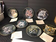 Set of 7 Princeton Gallery Cubs of the Big Cats Collectors Plates