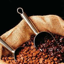 1 Pack 20 Coffee Bean Seeds Home Garden Plant Healthy Bulk Seeds S047