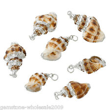 5PCs European Shell Charm Pendants Conch Natural Silver Plated