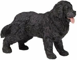 Papo Dog Newfoundland Animal Toy figure Replica 54018 NEW