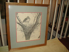 Jack Mesick Pencil Drawing Of Falcon In Tree-Signed & Numbered-1989-Framed