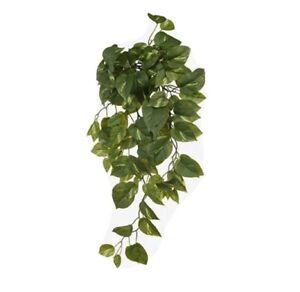 Real Touch Pothos Hanging Bush Colour: Green 70cm L Home Decorations
