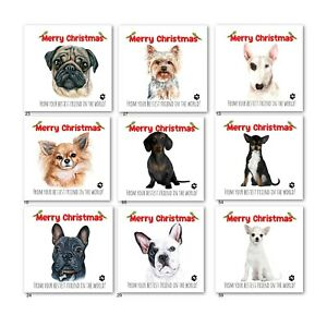 CHRISTMAS CARD FROM THE DOG-PUG,YORKIE,FRENCHIE,DACHSHUND,CHIWAWA,BULLTERRIER
