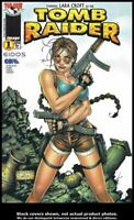 Tomb Raider: The Series #1 Variant D VF/NM