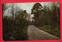 LOVER'S LANE NEAR AUGUSTA GA GEORGIA EARLY   POSTCARD