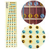 Bass Guitar Neck Scale Map Fretboard Note Labels Fret Sticker Learn