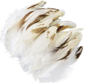 Bulk 50pcs Variegated Cream Beige Rooster Coque Feathers 8-13cm DIY Craft Juju