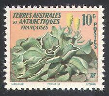 FSAT/TAAF 1959 Plants/Nature/Flowers/Pringlea 1v n31685