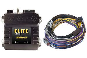 Haltech Elite 550 ECU & 8 ft Basic Universal Wire-in Harness Kit