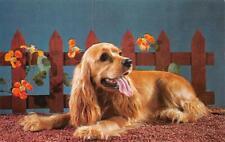 Animal   CUTE COCKER SPANIEL DOG Picket Fence~Flowers   c1950's Chrome Postcard