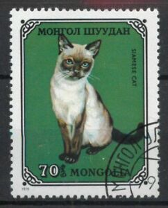 Siamese cat Mongolia 1979  stamp A178