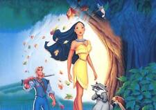Pocahontas Edible Party Cake Image Topper Frosting Icing Sheet