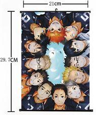 Hot Japan Anime Haikyuu!! Shoyo Hinata Shonen Home Decor Poster Wall Scroll c