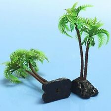 plante aquarium palmier