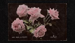 s3749)    VINTAGE AUSTRALIA EMPIRE POSTCARD OF ROSES , LA FRANCE