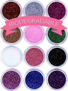 12 Loose Fine Glitter Dust Pots Nail Art Eye Shadow Face Body Set Biodegradable