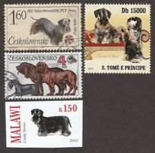 Cesky Terrier * Int'l Dog Postage Stamp Art Collection *Great Gift Idea*