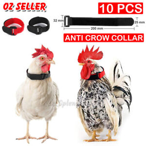 10PCS Anti Crow Collar for Roosters Cockerel No Crow Noise Neck Belt Nylon