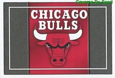 079 TEAM LOGO USA CHICAGO BULLS STICKER NBA BASKETBALL 2017 PANINI