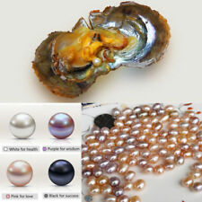 10PCS Individually Fresh Water Wrapped Akoya Oysters With Large Pearls 7-8MM