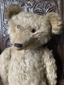 Antique Wonderful 1920 Mohair German Teddy Bear Long Muzzle Hump Glass Eyes, 22'
