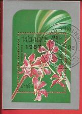 Blume Orchidee Vanda tricolor Block 118 Laos