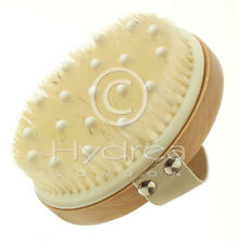 Hydrea London Combination Massage Brush With Wooden Pegs & Natural Bristle Wbh2