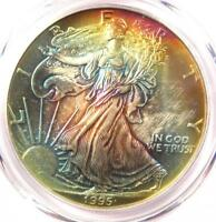 1995 Toned American Silver Eagle Dollar $1 ASE - PCGS MS65 - Rainbow Toning Coin