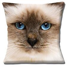 lindo gato ragdoll Placa Frontal Funda de cojín 40.6x40.6cm 40cm OJOS AZULES