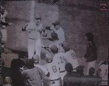 BOSTON RED SOX 3-D HOLOGRAM PHOTO MEISNER ART MLBP BASEBALL 1976 World Series