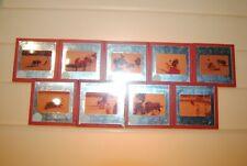 9 ancienne diapositive cadre metalique corrida taureau tauromachie toreador