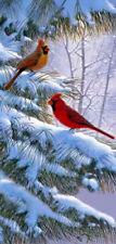 Winter Song by Derk Hansen Red Bird Wildlife Animals Winter Canvas Giclee VCS