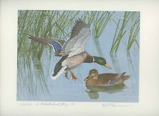 SOUTH DAKOTA #1 1976 SOUTH DAKOTA DUCK STAMP PRINT by Kusserow NEVER FRAMED