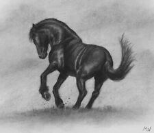 Black Horse Original Charcoal Artwork - Equine Art Horses Animals Pencil Drawing