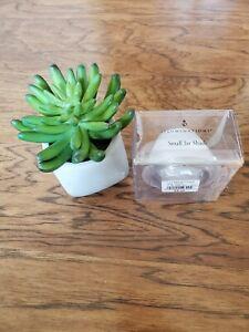 RARE ILLUMINATIONS mini Jar Shade