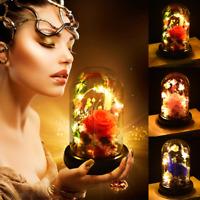 Luz LED de cúpula de vidrio rosa preservado Luz de noche Regalo para Esposa