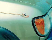 8x10 Handpainted Vehicle Hog Art Photo Mural Portfolio Page Airbrush Artist-Gift