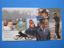 PRINCE WILLIAM 18th BIRTHDAY BRITISH VIRGIN ISLANDS MINI SHEET MINT UNHINGED