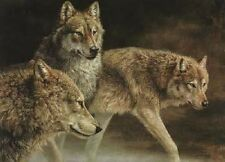 "Jorge Mayol "" Distant Call Wolves "" #791/950 Mint With All Original Papers"
