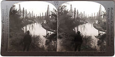 Keystone Stereoview of Oil Derricks, Goose Creek, TEXAS from the 1930's T400 Set