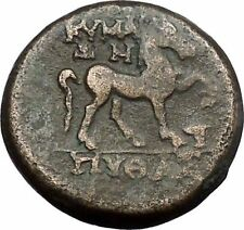 Kyme in Aeolis 300BC Rare Authentic Ancient Greek Coin Amazon Horse  i49730