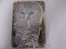Horned Owl Themed Beautiful Metal Light Switch Cover, Nature, outdoors, wildlife