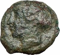 Syracuse Sicily 425BC Ancient Greek Coin  Nymph Arethusa DOLPHINS i25265