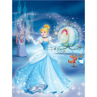 DIY 5D Full Drill Cartoon Cinderella Diamond Painting Embroidery Kits Art Decors