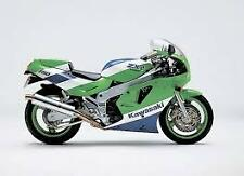 Kawasaki ZXR750 Titanium Oval Carbon outlet Road-Legal Motorbike Exhaust Can