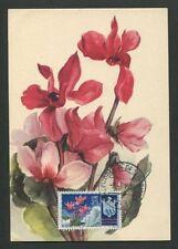 San marino Mk 1954 flora alpinas maximum mapa maximum card mc cm d8022
