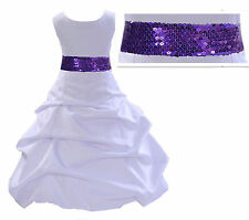 Flower Girl Dress Birthday Wedding Formal Pageant Bridesmaid Metallic Mesh Sash