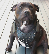 "Dog Harness Leather Collar Leash Set For Pitbull Mastiff 26""-33"" Studded Spiked"