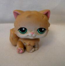 Littlest Pet Shop Persian Cat - Green Eyes - #129